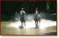Devils Glen Holiday and Equestrian Village
