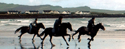 Activities in Kerry